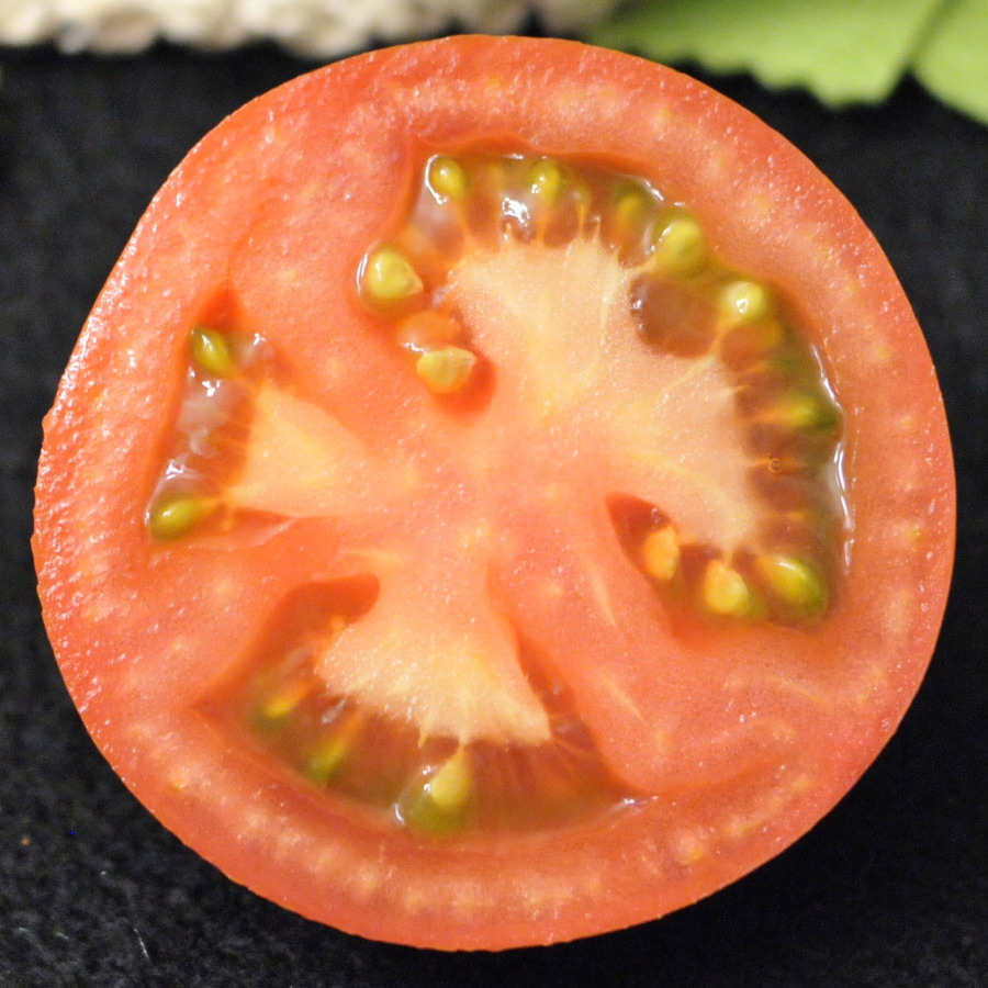 felt tomato slice tutorial