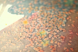 salt watercolors