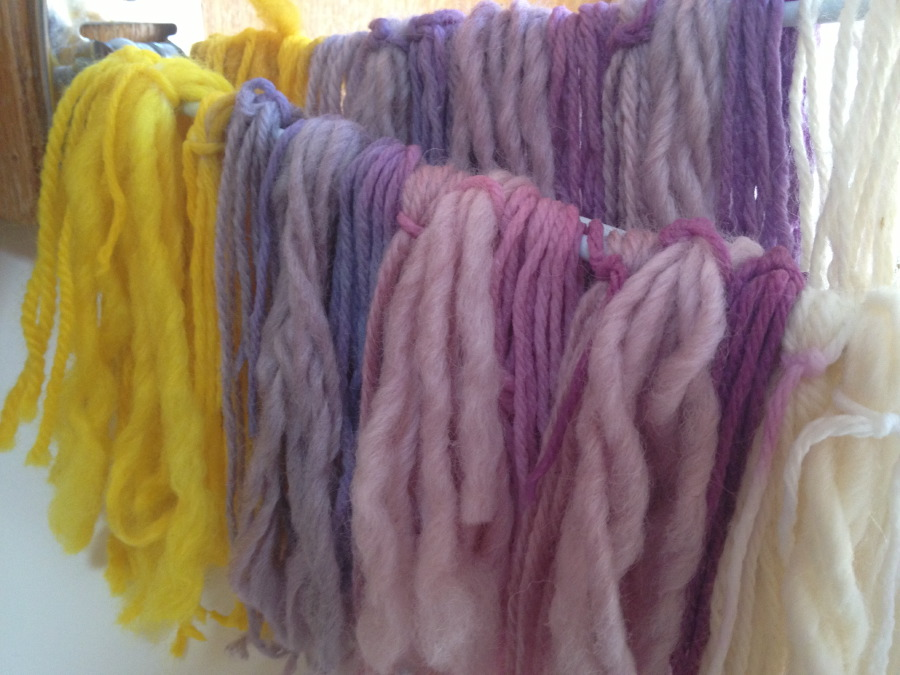 Plant Dyes Drying